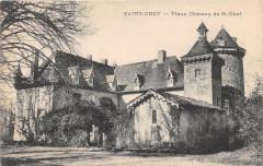 Saint Chef Vieux Chateau De Saint Chef - Saint-Chef