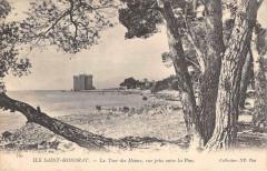 Ile Saint Honorat La Tour Des Moines Vue Prise Entre Les Pins - La Tour