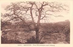 Quintin Vue Pittoresque Sur L'Etang - Quintin
