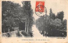 L'Isle Sur Serein Un Coin Du Serein - L'Isle-sur-Serein