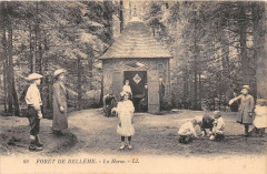 Foret De Belleme La Herse - Bellême