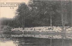 Montmorency Au Bord De L'Etang De La Chasse Moutons D'Abreuvant - Montmorency