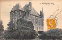 Bellegarde Le Donjon Vue Sud Ouest - Bellegarde
