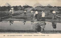 Les Sables D'Olonne Marais Salants Paludiers Au Travail - Les Sables-d'Olonne