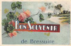 Bon Souvenir De Bressuire - Bressuire
