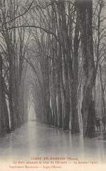 Ligny En Barrois Le Parc Pendant La Crue De L'Ornain 1910 (rare - Ligny-en-Barrois