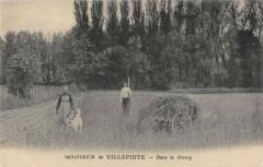 Sanatorium De Villepinte Dans Le Champ - Villepinte