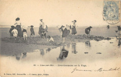 Lion Sur Mer Divertissements Sur La Plage - Lion-sur-Mer