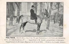 Bretagne Hippique Plotron Appartient A Mr Gaude A Quimper 29 Quimper