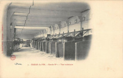 Le Haras Du Pin Ecurie N°1 Vue Interieure - Ri