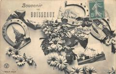 Souvenir De Boisseaux (cpa rare - Boisseaux