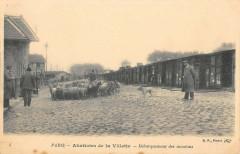 Abattoirs de la Villette - Débarquement des moutons - Paris 19e