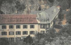 Hotel Du Mont Gornadore A Saint Nectaire Le Haut (cpa toilée - Saint-Nectaire