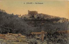 Callian Vue Generale (cpa toilée - Callian