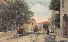 Puisserguier Avenue De Capestang (cpa pas courante - Puisserguier