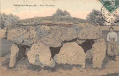 Trizay Les Bonneval Pierre Druidique (cpa pas courante - Bonneval