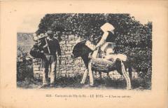Curiosites De L'Ile De Re Le Bois L'Ane En Culotte - Bois