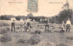 Moissonneurs Vivonnois Vivonne (Scene D'Agriculture - Vivonne