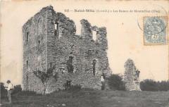 95 Saint Witz Les Ruines De Montmelian 94 Val de Marne