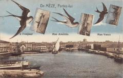 De Meze Portez Lui - Mèze