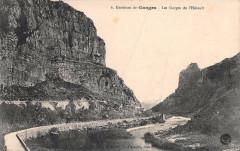 Env.de Ganges Les Gorges De L'Herault - Ganges