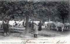 Chateaumeillant Le Champ De Foire (dos non divisé)  (Belle Cpa Avec Anima - Châteaumeillant