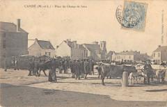 Cande Place Du Champ De Foire - Candé