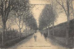Le Cendre Avenue Des Marronniers - Le Cendre