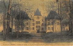 Environs Langeac Chateau Du Cluzel (cpa toilée - Langeac