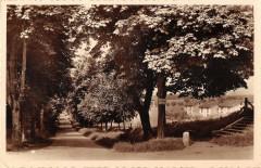 Stenay Promenade Des Tilleuls - Stenay