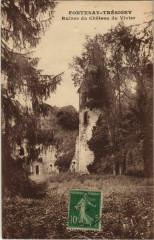 Fontenay-Tresigny Ruines du Chateau du Vivier France  - Fontenay-Trésigny