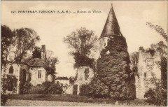 Fontenay-Tresigny - Ruines du Vivier - Fontenay-Trésigny
