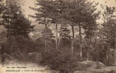 Dormelles - Croix de Montaigu - Dormelles
