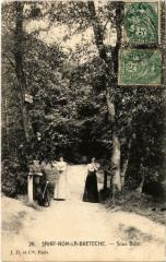 Saint-Nom-la-Breteche - Sous Bois - Saint-Nom-la-Bretèche