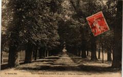 Saint-Brice-sous-Forét (S.-et-O.) - Allée du Cháteau du Luat - Saint-Brice-sous-Forêt