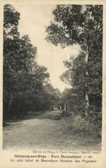 Morsang-sur-Orge  Parc Beauséjour Un coin de Beausékour (Avenue.... - Morsang-sur-Orge