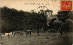 Chateau de Charly - La Prairie - Charly