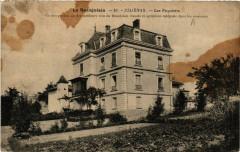 Le Baujolais Julienas Les Paquelets - Juliénas