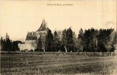 Chateau de Boisy - pres Roanne France 42 Roanne