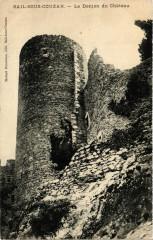 Sail-sous-Couzan - Le Donjon du Chateau 42 Sail-sous-Couzan