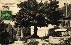 Chateaurenard Le Symcomore et le Porte feodale - Châteaurenard