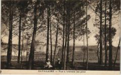 Cavalaire-sur-Mer Vue a travers les Pins - Cavalaire-sur-Mer