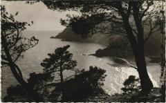 Cavalaire-sur-Mer Plage de Bon-Porteau - Cavalaire-sur-Mer