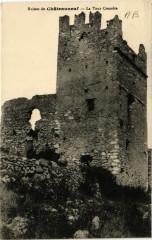 Ruines de Chateauneuf - La Tour Crenelée - La Tour