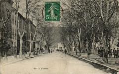 Riez - L'Avenue - Riez