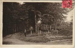 Mauron Allée du bois du Plessis - Mauron