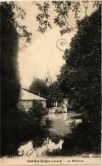 Chatillon-Coligny - Le Milleron - Châtillon-Coligny