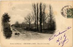 Chilleurs-aux-Bois - Route de la Cour-Dieu - Chilleurs-aux-Bois