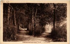 Chateauneuf-sur-Loire - Le Chastaing - Châteauneuf-sur-Loire