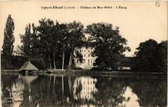 Ligny-le-Ribault Chateau de Bon-Hotel L'Etang - Ligny-le-Ribault